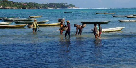Oplev smukke Bali på SU